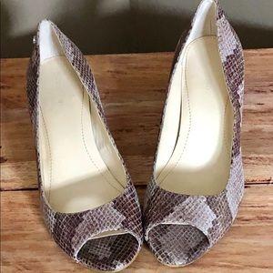 Calvin Klein pyython skin shoes